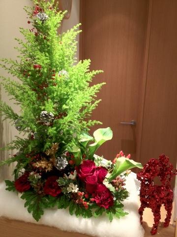 2012_12_19.JPG