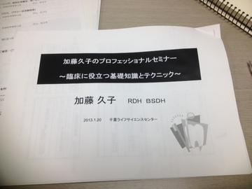 2013_01_28 (3).JPG